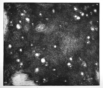 """Cosmos Etching 11"""" x 15"""" 2012"""